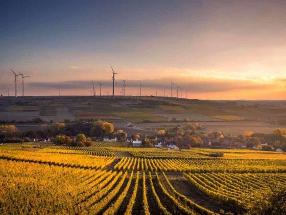 emisiones-de-carbono