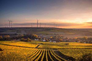 Cómo reducir las emisiones de carbono